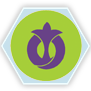 Symbol Magharibské gardy
